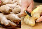 Peel-the-ginger-031