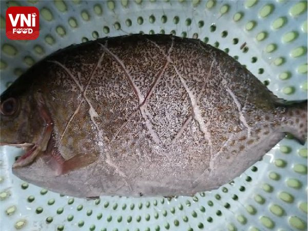 FRIED-POMFRET-WITH-MANGO-AND-FISH-SAUCE-063